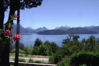Flores patagónicas y cordobesas