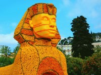 Made out of Oranges