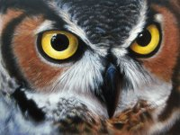 Oil painted Owl