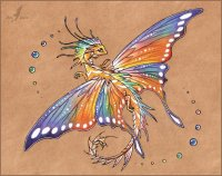 Tropical Butterfly Dragon