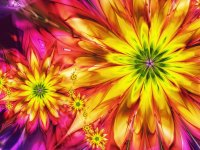 Abstract Flowers bright Colorful