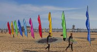 Annual Kite Show-Huntington Beach