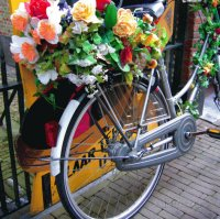 Dutch flower power Bike