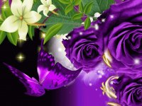 Purple Roses and Butterfly