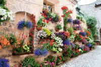 Spello Village  Umbria