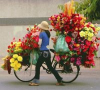 Selling Flowers in Indonesia