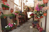 Street in Spello  Umbria