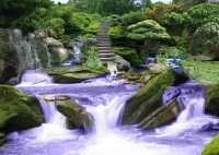 Zen Garden with Purple Rushing Water