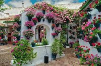 Flowerful Patio  Cordoba  Spain
