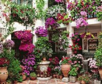 House in Cordoba  Spain