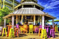 The Bar  Key West  Florida