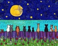 Full Moon Cats
