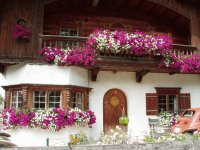Flower Balcony  Bayern  Germany