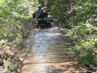 4-wheel ..swimming... on swampy trail