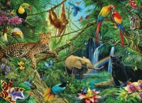 Jungle animals  Brasil