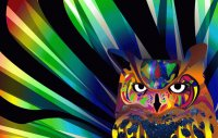 Abstract Owl