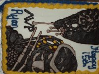 Preditor Birthday Cake