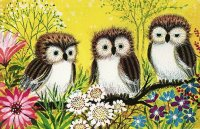 Owls between the Flowers