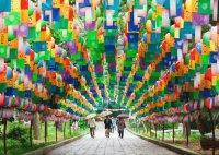 Tunnel of Lanterns  Beomeosa Temple Busan  Korea