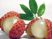 Fresh Lychee  Southeast Asia