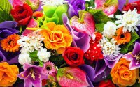 Colorful-Bouquet