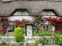 Thatching House England
