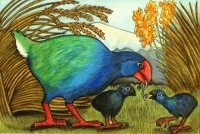 Takahe  New Zealand art