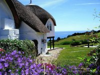 English Cottage along the Sea