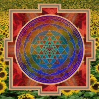 Yantra and the Sunflowers