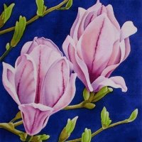 Painted Magnolia