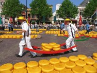 Cheese Market Alkmaar the Netherlands
