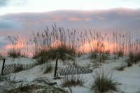 Gulf Shores, AL Daily Beach Photos
