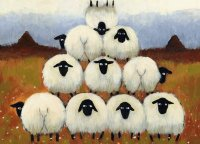 Pretty Sheeps in a row by Thomas Joseph