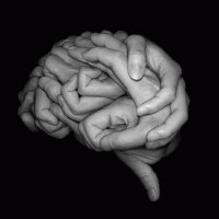 finger brain
