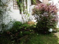 My GREAT garden (Verviers-Belgium)