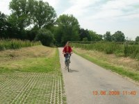 Bicycle in Baie de Somme (France)