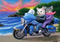 Kittens on the Harley