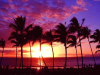 Hawaiian sunset  Maui Island