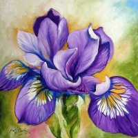 Purple Iris Wildflower