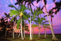 Sunset in Paradise - Hawaii