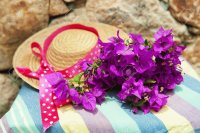 Purple Bougainvillea and  Straw Hat