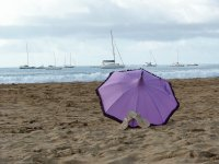 Purple Parasol by the Sea
