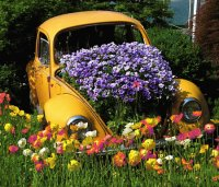 Unique Volkswagen Beetle Flower Planter