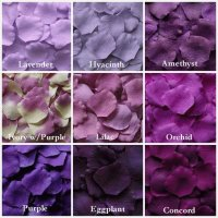 Shades of Purple Petals