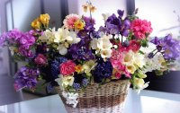 Gorgeous Basket of Silk Flowers