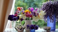 Gorgeous Wildflowers in Vases-Still Life