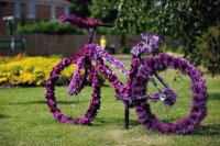 Purple Floral Garden Bike