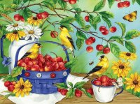 Birds n cherries
