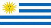 Banderas del mundo - Flags of the world