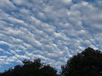 Rippled Clouds